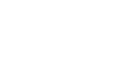 OFFICIAL SELECTION - NewFilmmakers NY - 2018-2